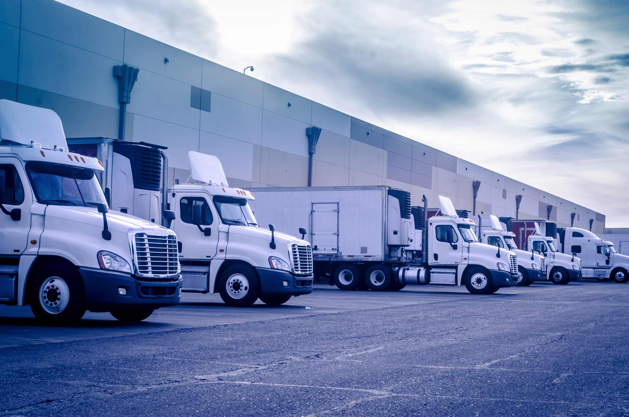 Cross Docking Facilites